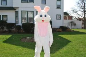 Bunny - Copy